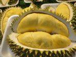 Manfaat Buah Durian Untuk Kesehatan Yang Jarang Orang Tahu