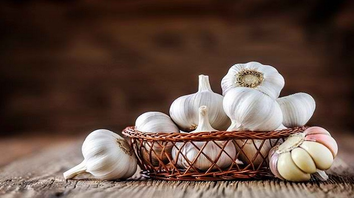 Beragam Manfaat Bawang Putih Untuk Kesehatan